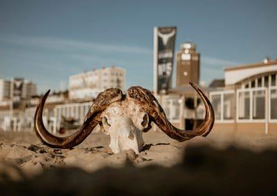 Interieur fotografie by Fotostudio Zandvoort